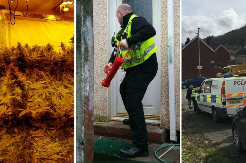 popo - image courtesy of South Wales Police